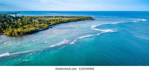Shadow Mentawai, Mentawai Islands, Indonesia