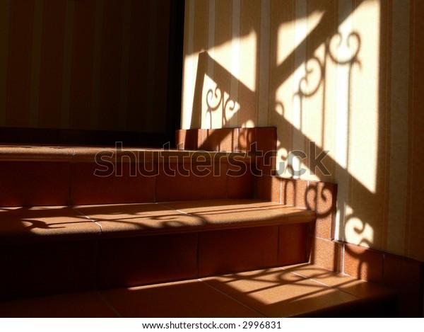 Shadow on a ladder