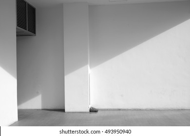 shadow on wall in the room