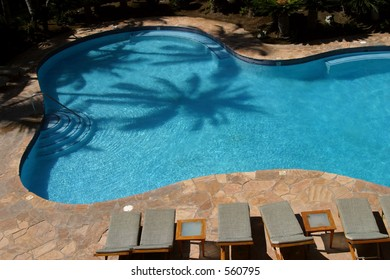 The shadow of a palm is reflected on a pool at a resort hotel on the Big Island of Hawaii.