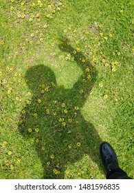 Shadow of a person on green grass floor with tiny yellow flowers