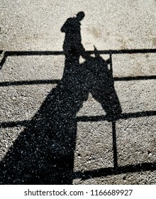 Shadow of a person on a rail climbing onto a horse's neck  reflected on a gravel ground