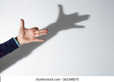 shadow play dog