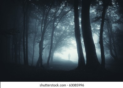 shadow sneaking in the forest