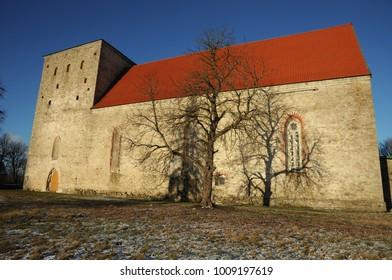 Shadow of a tree without leaves on the wall of old medieval church in winter in Poide, Maarja kirik,  Saaremaa, Estonia, Europe