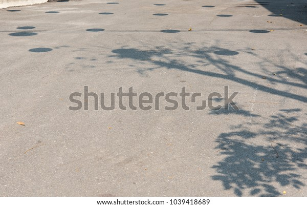 Shadow trees on the street.