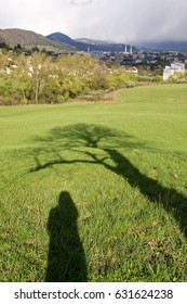 Shadow of woman standing under the tree on meadow. Slovakia