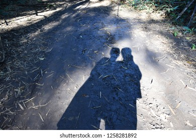 Shadows of men versus women stretched down to the ground in a forest.