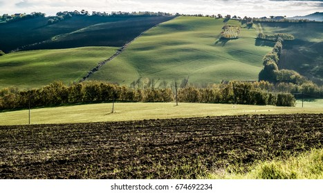 Shadows on the soft hills between Emilia romagna e Marche, Italy.