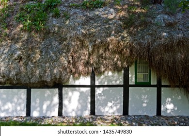 Shadows on the wall of an old half-timbered cottage with a seaweed roof