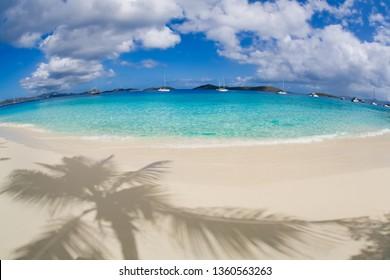 Shadows of palm trees on the beach at Salomon Beach in the Virgin Islands National Park on the Caribbean Island of St John in the US Virgin Islands