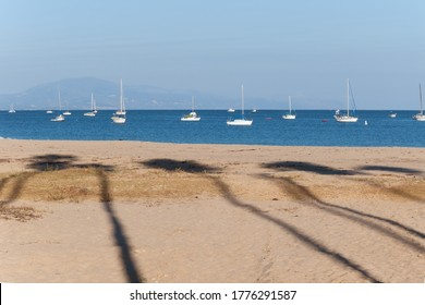 Shadows of palm trees on the sand and white boats in the blue sea