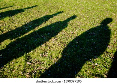 shadows of several people on the green grass