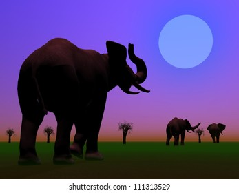 Shadows of three elephants standing between baobabs in the savannah by night with moon