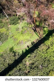Shadows of tourists on a suspension bridge is cast onto greenery of souther California desert greenery during winter after rain