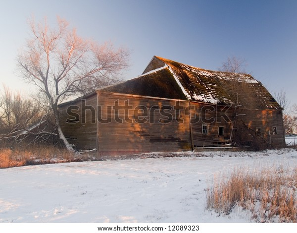 Shadows of trees paint a barn in a winter sunset.