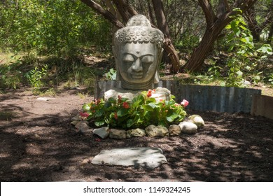 a shadowy garden with a buddha statue