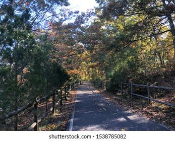 A shady bike trail with fall foliage and rail fences in Rumford, Rhode Island
