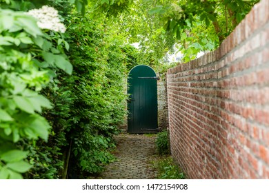 shady, narrow access path to a wooden garden gate, bordered by a hedge and a brick wall