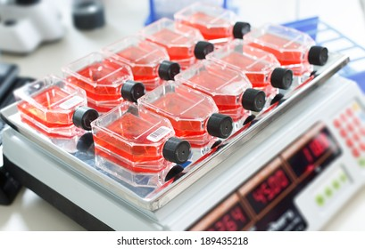 shaker for the growth of bacterial culture