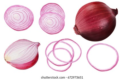 shallot, shallot drawing set. Isolated shallot, sliced piece vegetables on branch. vegetarian food sketch. Farm market product. Great for label, banner, poster