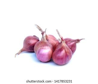 shallot onions isolate on white background.Fresh shallot.