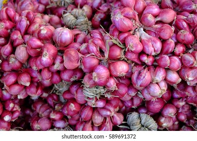 shallots/Shallots are used as a spice for cooking