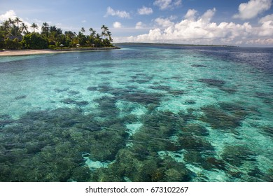 A shallow coral reef grows in the shallow waters of Wakatobi National Park, Indonesia. This remote region is known for its spectacular marine biodiversity.