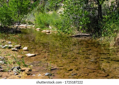A shallow creek in the Angeles National Forest in Los Angeles County.