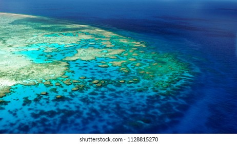 Shallow edge of the back reef (Lodestone Reef, Great Barrier Reef)