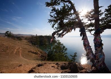 Shaman tree in Olkhon Island