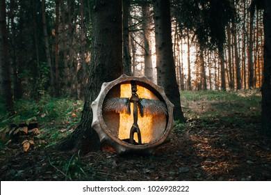 Shamanic drum in forest