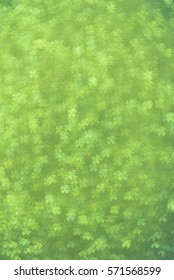 Shamrock Bokeh background. Holiday wallpaper texture and design.