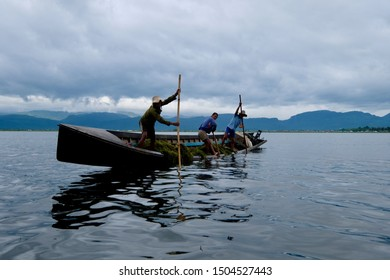 Shan State/Myanmar-Sep.2019: close up three young local men standing on inclined boat in rippled Inle lake. Using poles to harvest aquatic weeds. White cloudy sky with mountains.