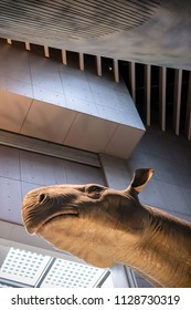 Shanghai, China - April 13 2018, Realistic life size replica model of Indricotherium or Paraceratherium the largest land mammals that has ever existed on earth at Shanghai Natural History Museum