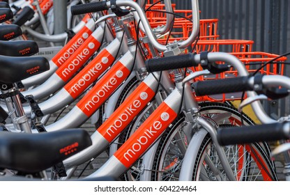 Shanghai, China - March 17, 2017: Rows of bikes are placed in the white lines painted on the road in Shanghai. The disorder of parking becomes a social problem according the increase of share bikes.
