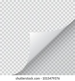 Shape of bent angle is free for filling.  Illustration.