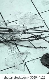 Shards of broken crystal vase on floor