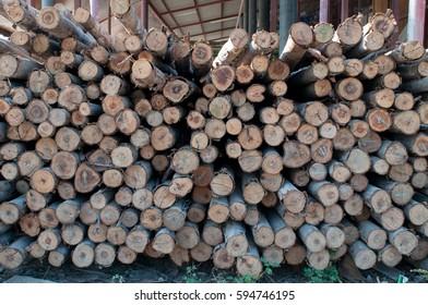 Shareae Images, Stock Photos & Vectors   Shutterstock