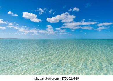 Shark Bay, Beach, Clear Water, Western Australia