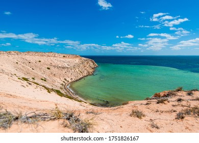 Shark Bay, Eagle Bluff, Western Australia