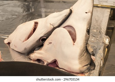 Shark heads on local market fishmonger