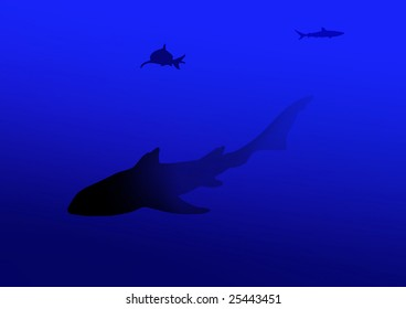 Shark, on the background of the deep orchid color