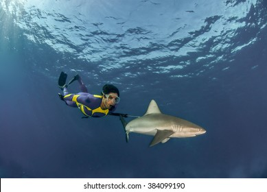 Shark scientist, Ryan Johnson, swimming alongside a galapagos shark in a brightly colored wetsuit