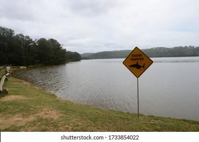 Shark sigthed sign on a  salt lake bank -- Narrabeen Lake Australia