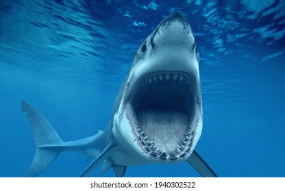 A shark under sea with big mouth