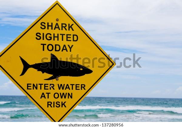 Shark warning sign closeup