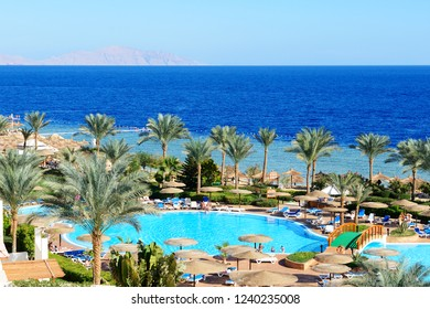 SHARM EL SHEIKH, EGYPT -  DECEMBER 1: The tourists are on vacation at popular hotel on December 1, 2012 in Sharm el Sheikh, Egypt. Up to 12 million tourists have visited Egypt in year 2012.