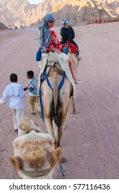 SHARM EL SHEIKH, EGYPT - JULY 9, 2009. People ride on camels in the desert.