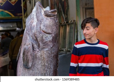 Sharm El Sheikh/Egypt-01.02.2019. Photo with dead fish. Atlantic goliath grouper in the eastern bazaar. Fish hanging on a rope in front of a fish store. Dead giant, killed and pulled out of the sea.